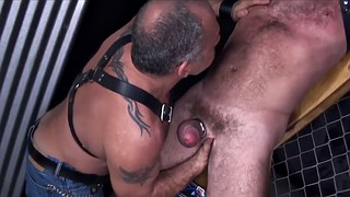 Bbw, Leather, Leather bondage, Bbw bdsm, Bbw bondage, Bbw group
