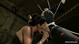 Tied, Shemale fucks guy, Shemale domination, Shemale bondage, Dominated, Tied fucked