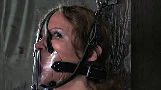 Whipped, Bondage gagged, Orgasm milf, Submissive milf, Whips