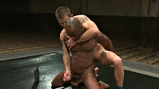 Wrestling, Fight, Fighting, Jerk, Bbc handjob, Black cat